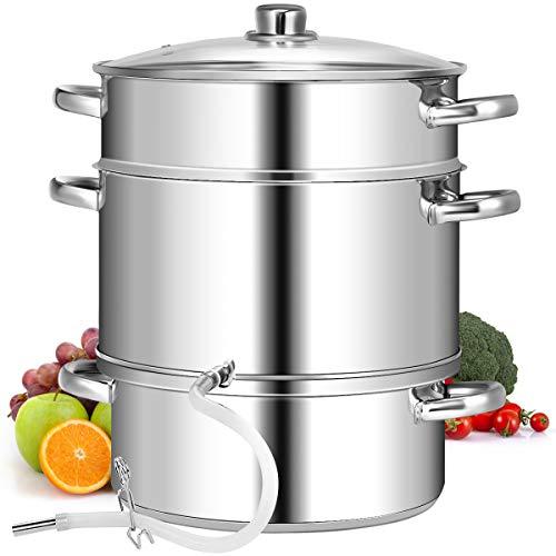 COSTWAY-9L-Cuiseur–Vapeur-et-Extracteur-de-Jus-pour-Fruits-et-Lgumes-en-Acier-Inoxydable-avec-Couvercle-en-Verre-Tremp-Tuyau-Pince-Poignes35-x-265-x-395-CM-0